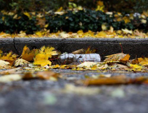 Greenwashing – co to takiego i jak nie dać się nabrać?