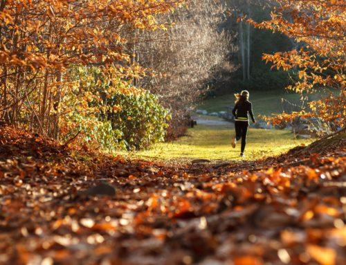 Jaki sport uprawiać jesienią?